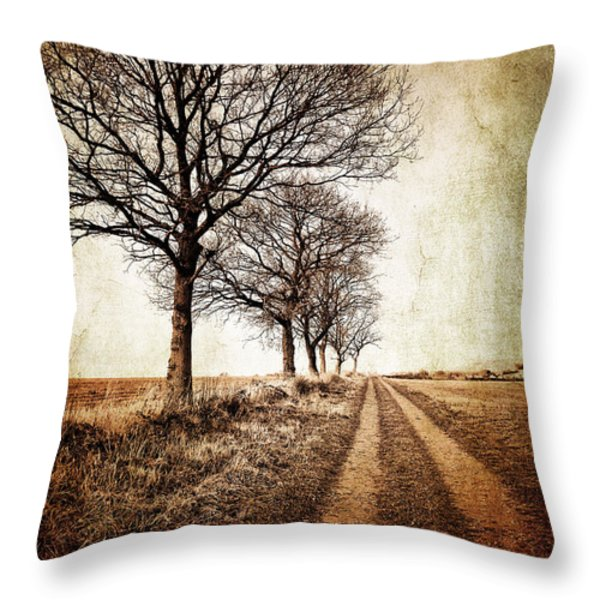 winter track with trees Throw Pillow by Meirion Matthias