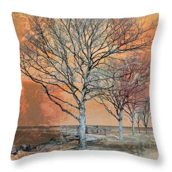 Winter's Dawn Throw Pillow by Shawna  Rowe