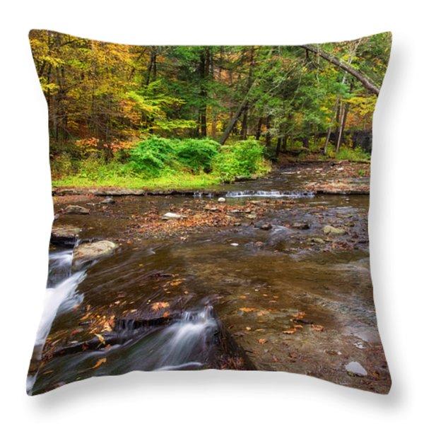 Wolf Creek 2 Throw Pillow by Mark Papke