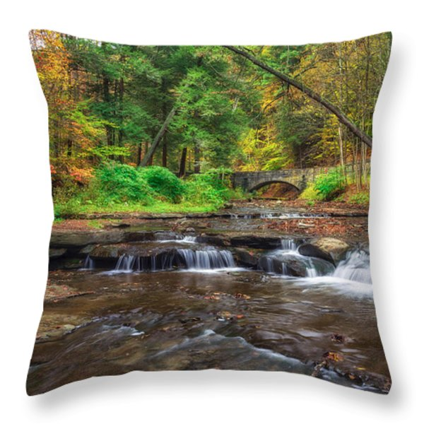 Wolf Creek Throw Pillow by Mark Papke
