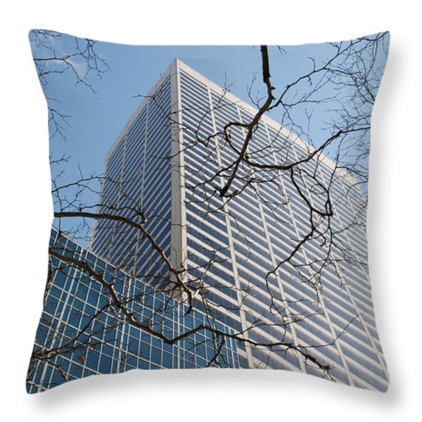 Wood And Glass Throw Pillow by Rob Hans