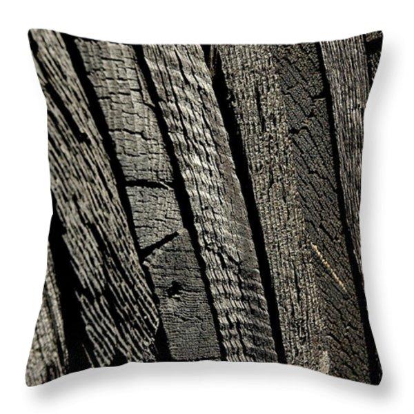 Wooden Water Wheel Throw Pillow by LeeAnn McLaneGoetz McLaneGoetzStudioLLCcom