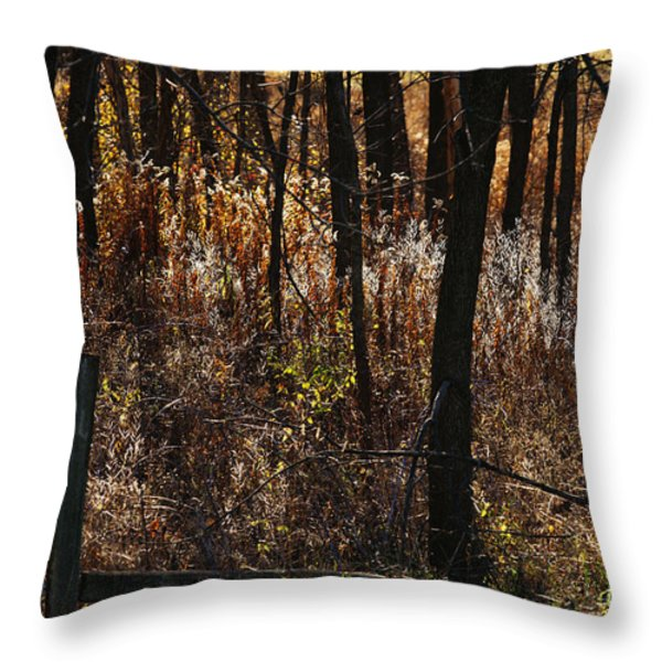 Woods - 2 Throw Pillow by Linda Knorr Shafer