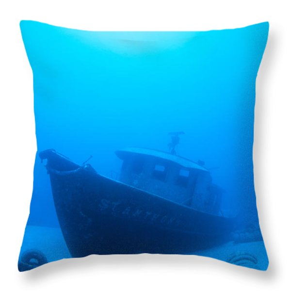 Wreck Of The St. Anthony Throw Pillow by Dave Fleetham - Printscapes