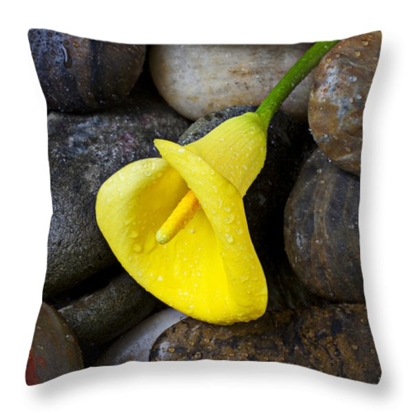 Yellow Calla Lily On Rocks Throw Pillow by Garry Gay