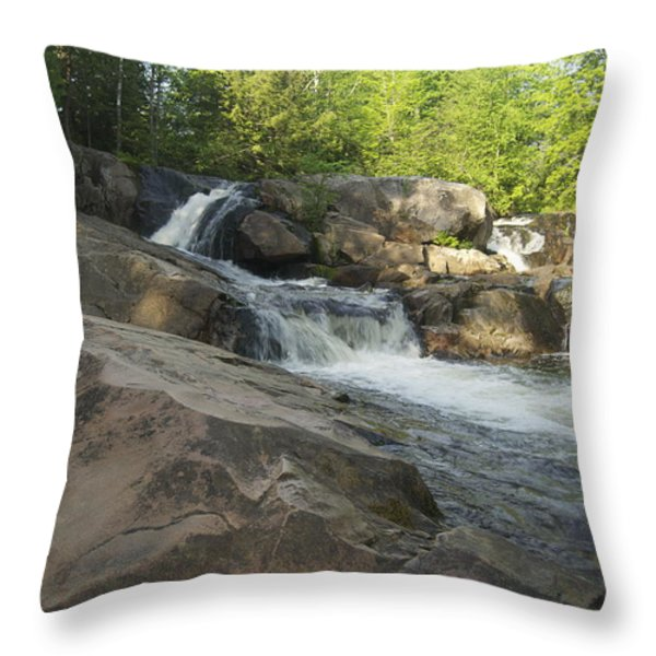 Yellow Dog Falls 2 Throw Pillow by Michael Peychich