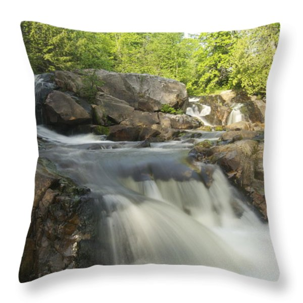 Yellow Dog Falls 3 Throw Pillow by Michael Peychich
