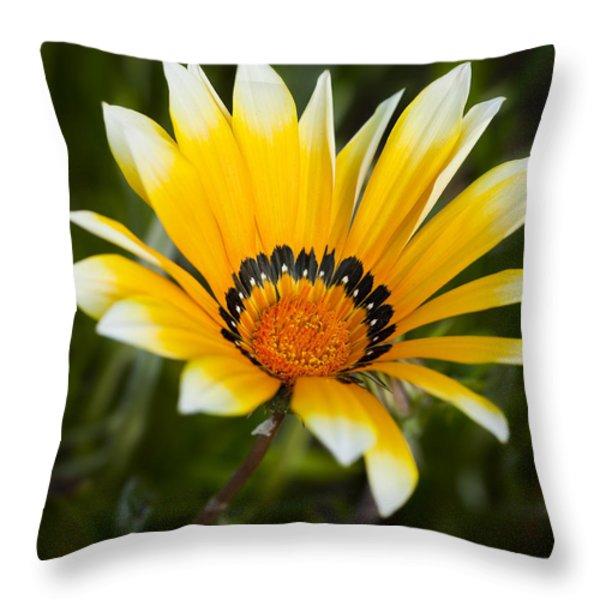 Yellow Fellow Throw Pillow by Kelley King