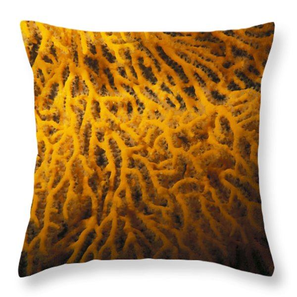 Yellow Gorgonian Sea Fan, Mopsella Throw Pillow by James Forte