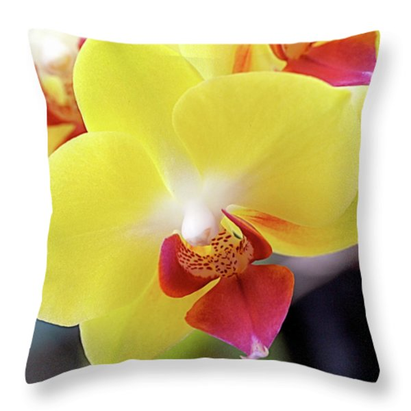 Yellow Phalaenopsis Orchids Throw Pillow by Rona Black