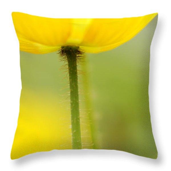 Yellow Poppy Throw Pillow by Silke Magino