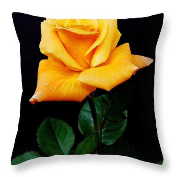 Yellow Rose Throw Pillow by Michael Peychich