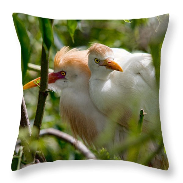 Young Couple Throw Pillow by Christopher Holmes