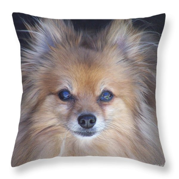 Zoom Throw Pillow by Brian  Commerford