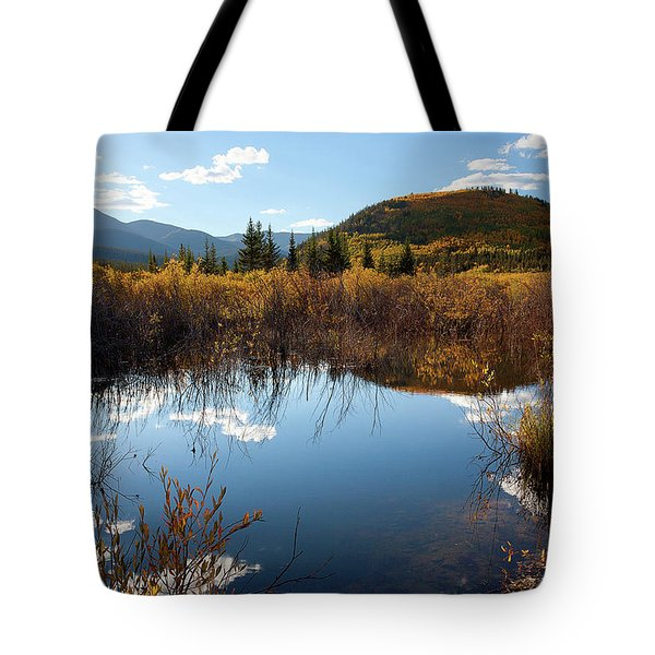 A Reflection Of Fall Tote Bag by Jim Garrison