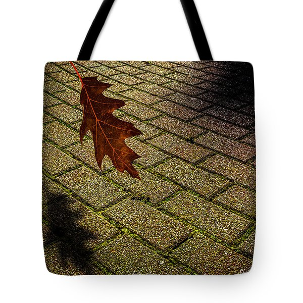 Autumnal Equinox Tote Bag by Bob Orsillo