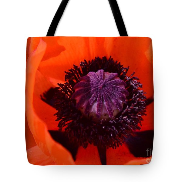 Orange Poppy Tote Bag by Kathleen Struckle
