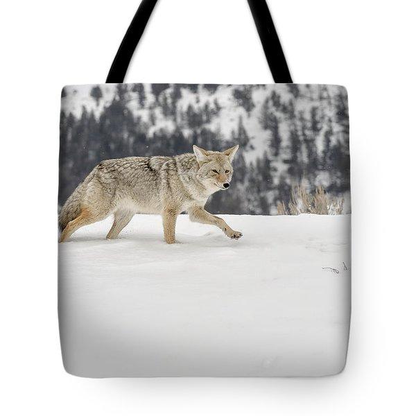 Winter's Determination Tote Bag by Sandra Bronstein