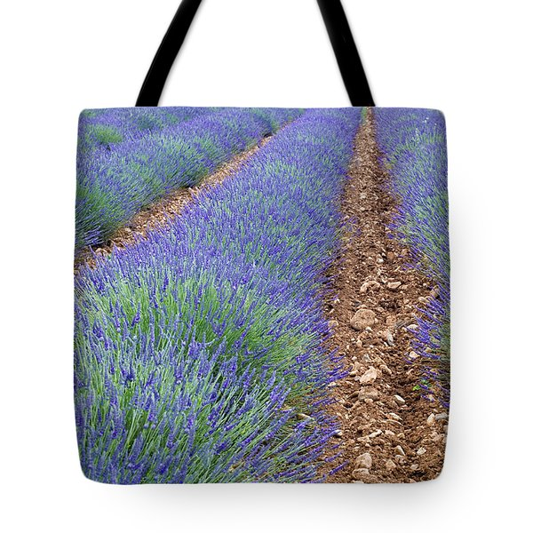 080720p071 Tote Bag by Arterra Picture Library