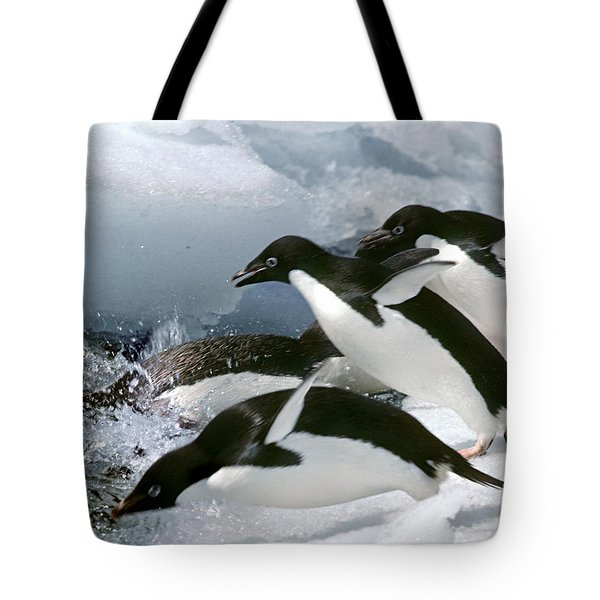 Adelie Penguins Tote Bag by Art Wolfe