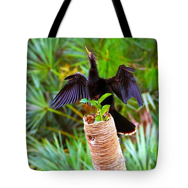 Anhinga Anhinga Anhinga On A Tree Tote Bag by Panoramic Images