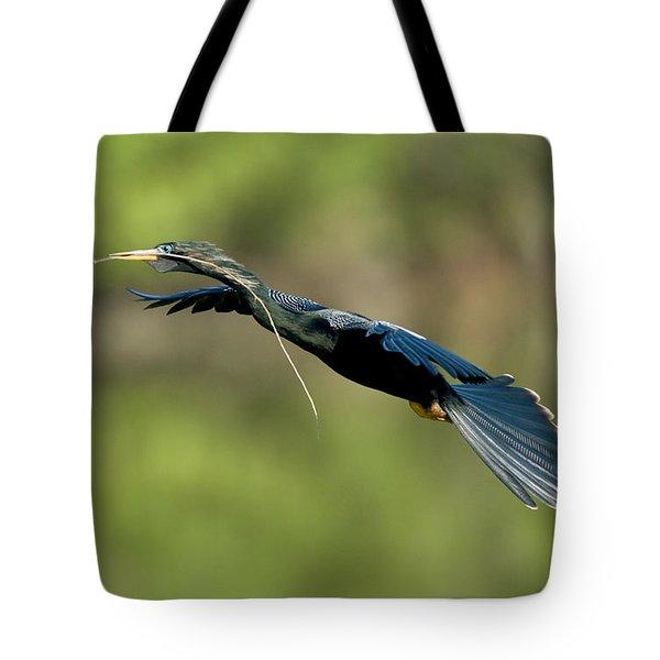 Anhinga Tote Bag by Anthony Mercieca