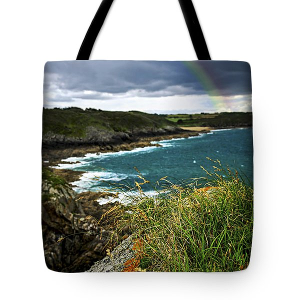 Atlantic coast in Brittany Tote Bag by Elena Elisseeva