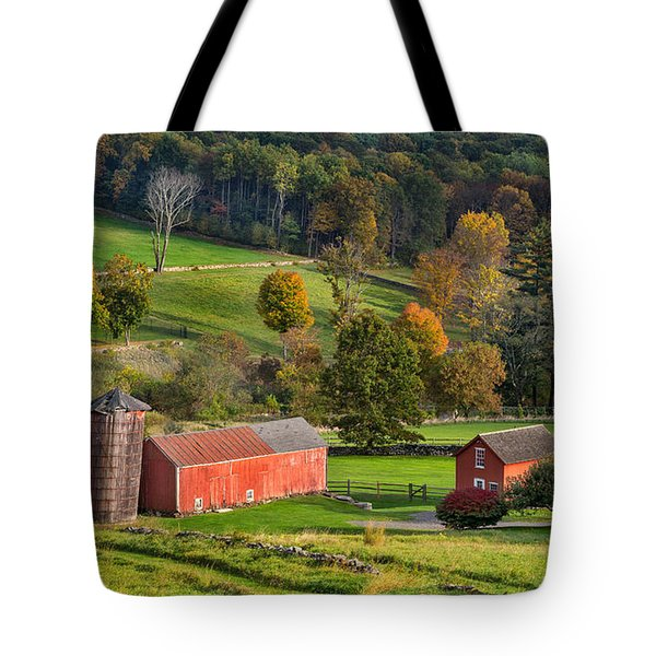 Autumn Light Tote Bag by Bill  Wakeley