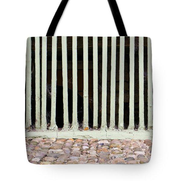 Bars Tote Bag by Tom Gowanlock