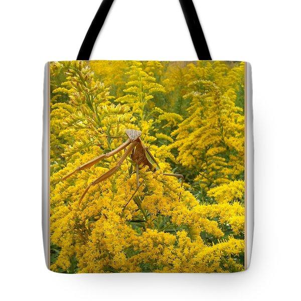 Blending In Tote Bag by Sara  Raber