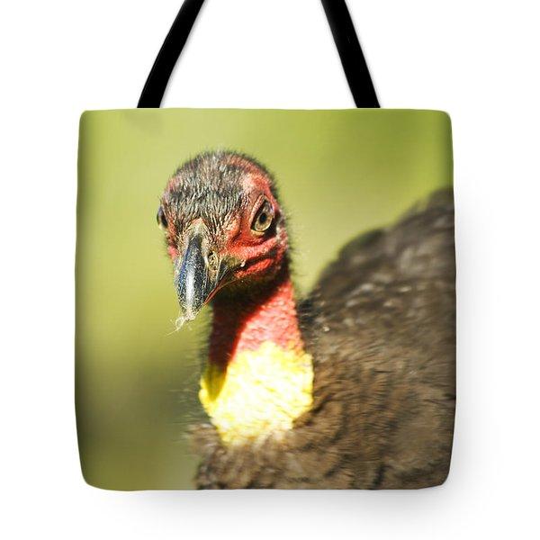 Brush Scrub Turkey Tote Bag by Jorgo Photography - Wall Art Gallery