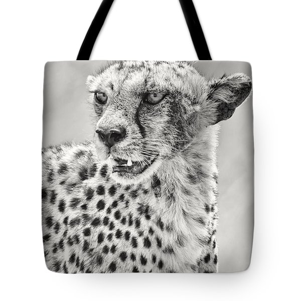 Cheetah Tote Bag by Adam Romanowicz