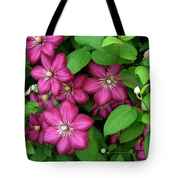 Clematis Tote Bag by Penny Lisowski