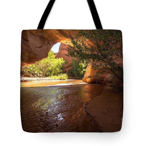 Coyote Natural Bridge - Coyote Gulch - Utah Tote Bag by Gary Whitton