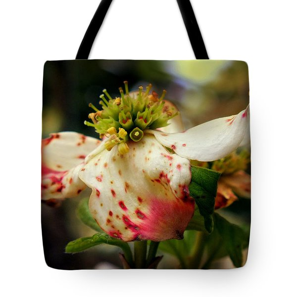 Cranberry Dogwoods Tote Bag by KAREN WILES