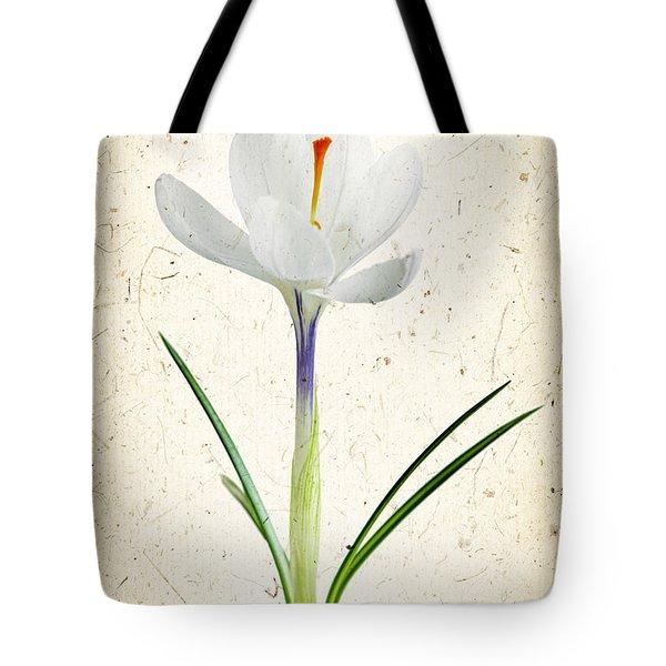 Crocus Flower Tote Bag by Elena Elisseeva