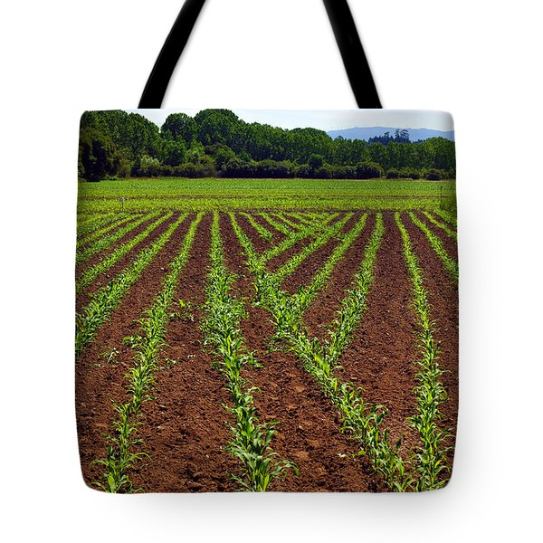 Cultivated Land Tote Bag by Carlos Caetano