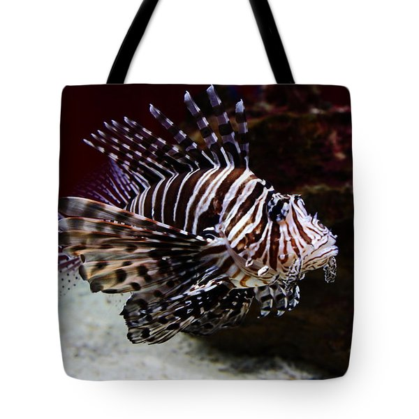 Devil Firefish Tote Bag by Aidan Moran