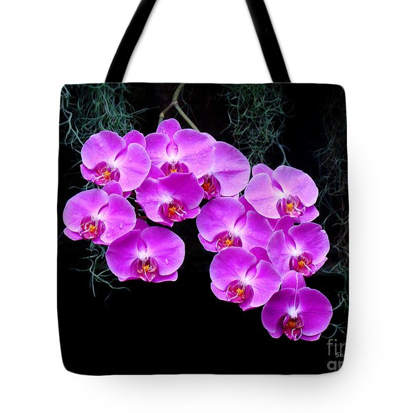 Dew-kissed Orchids Tote Bag by Sue Melvin