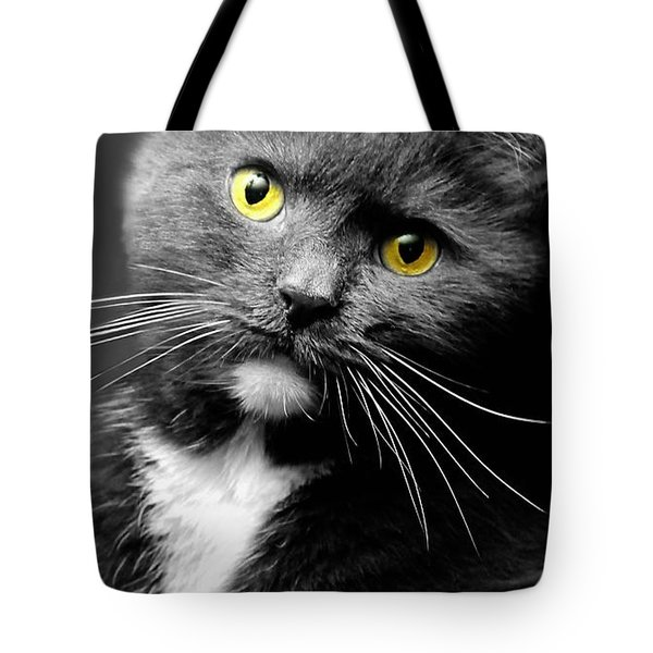 Domestic Gray And White Short Hair Tote Bag by Diana Angstadt