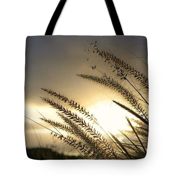 field of dreams Tote Bag by Laura  Fasulo