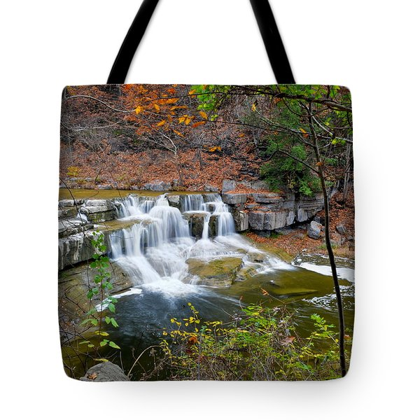 Finger Lakes Waterfall Tote Bag by Frozen in Time Fine Art Photography