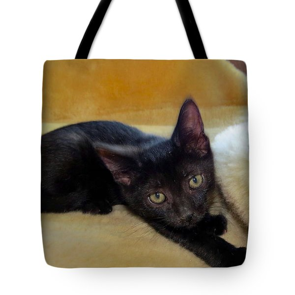 Hamming It Up Tote Bag by Art Dingo