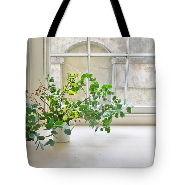 House Plant Tote Bag by Tom Gowanlock