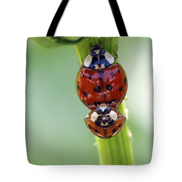 It Takes Two Tote Bag by Sharon Talson