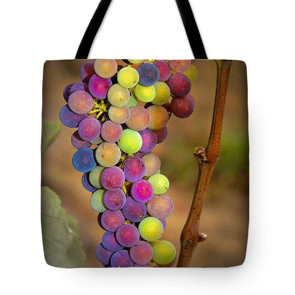 Jewel Tones Tote Bag by Jean Noren