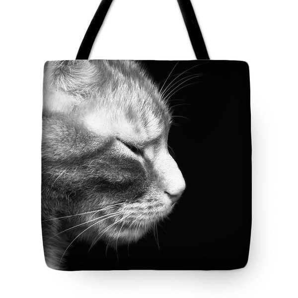 Just A Catnap Tote Bag by Mountain Dreams