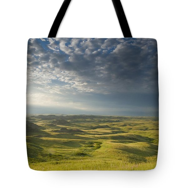 Killdeer Badlands In The East Block Of Tote Bag by Dave Reede