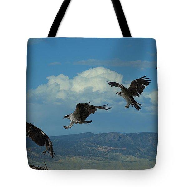 Landing Pattern Of The Osprey Tote Bag by Ernie Echols