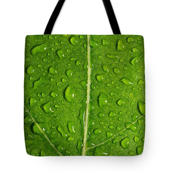 Leaf Dew Drop Number 12 Tote Bag by Steve Gadomski